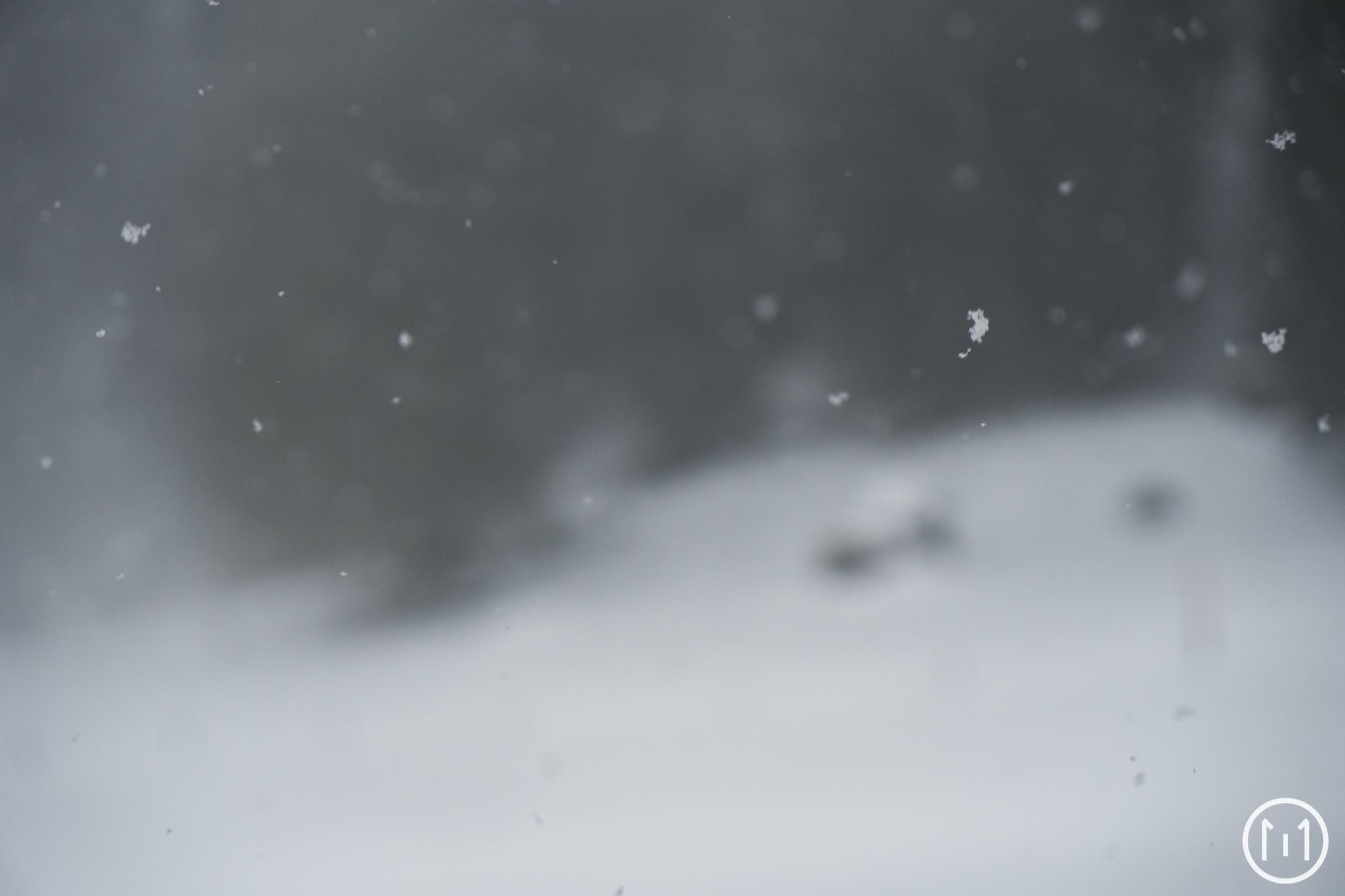 Crazy Snow Camp III